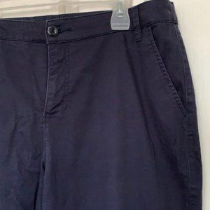 St. John's Bay Navy Blue Pants Chinos 14